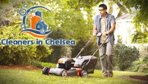 lawn-mowing-london-chelsea