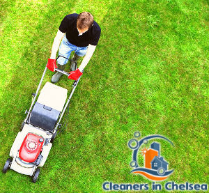 lawn-mowing-services-chelsea
