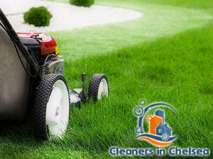 grass-cutting-services-chelsea